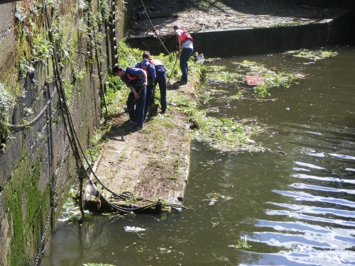 Putney Sea Scouts cleaning the Beverley Brook.
